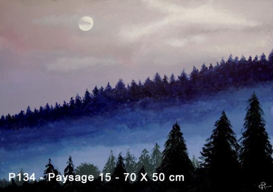 P134 Paysage 15